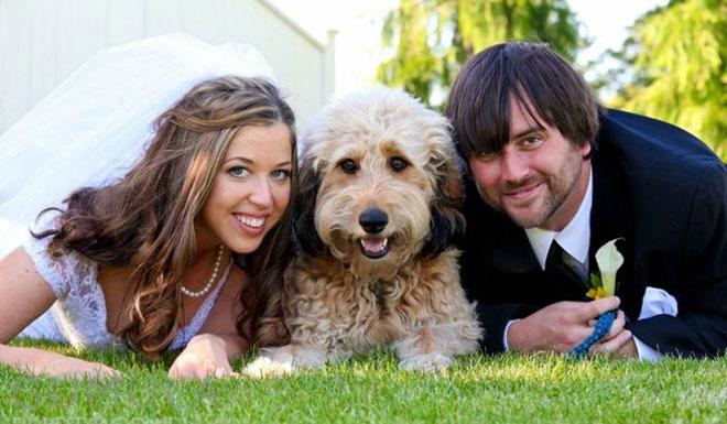 3_evcil_hayvanli_foto - Düğün dış çekimlerinizde evcil hayvanınız ile poz verin