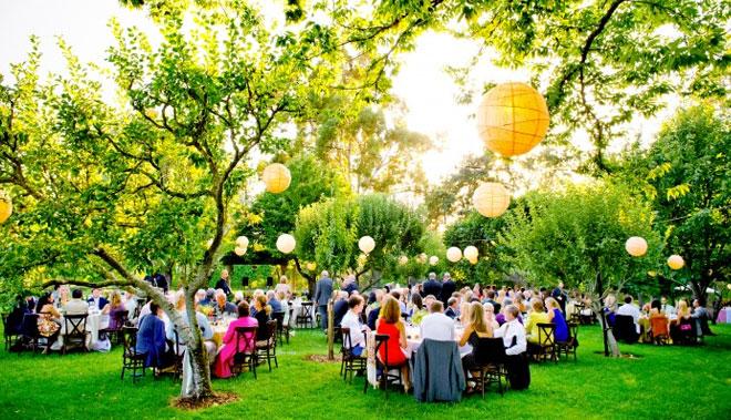 Yaz Düğünü