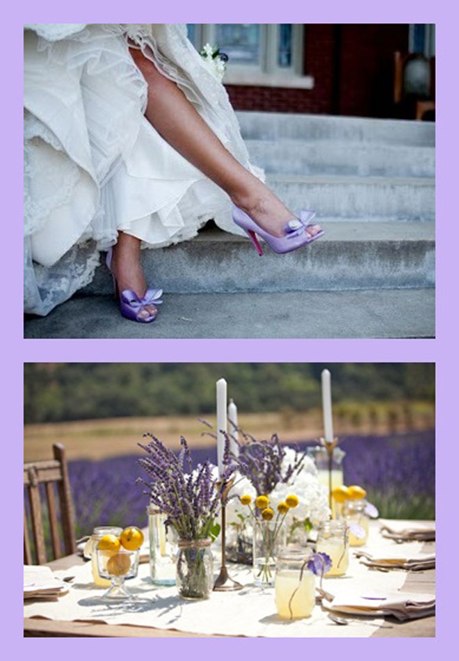 lavanta kokulu bahar düğünleri