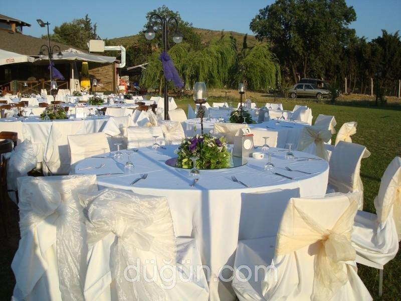 Falabella Kır Düğünü