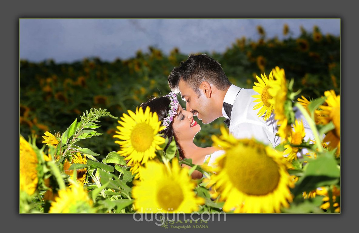 Şahin Fotoğrafçılık