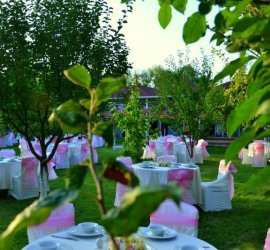 MF Garden