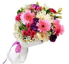 Anemon Çiçekçilik