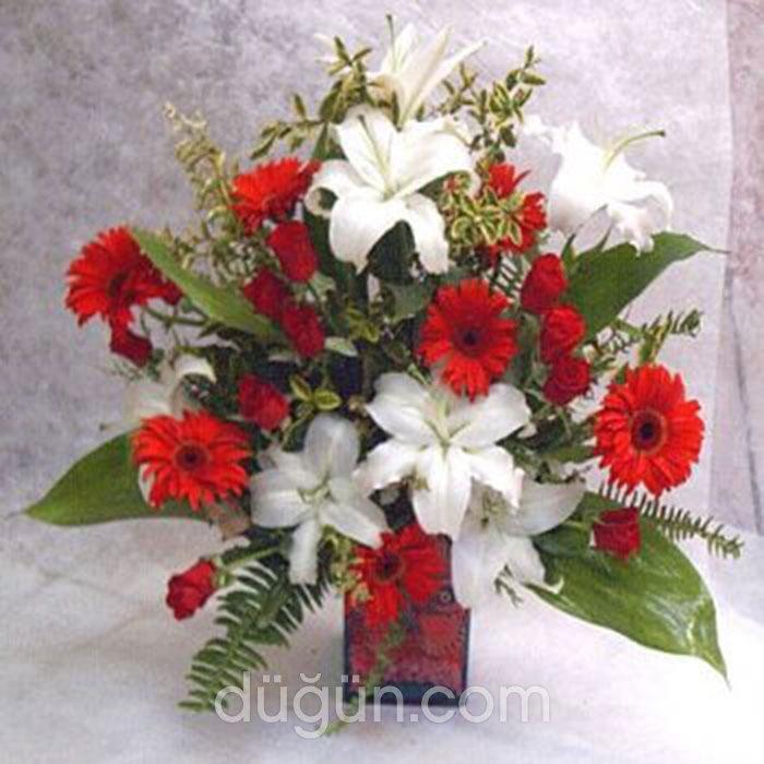Hanımeli Çiçekçilik