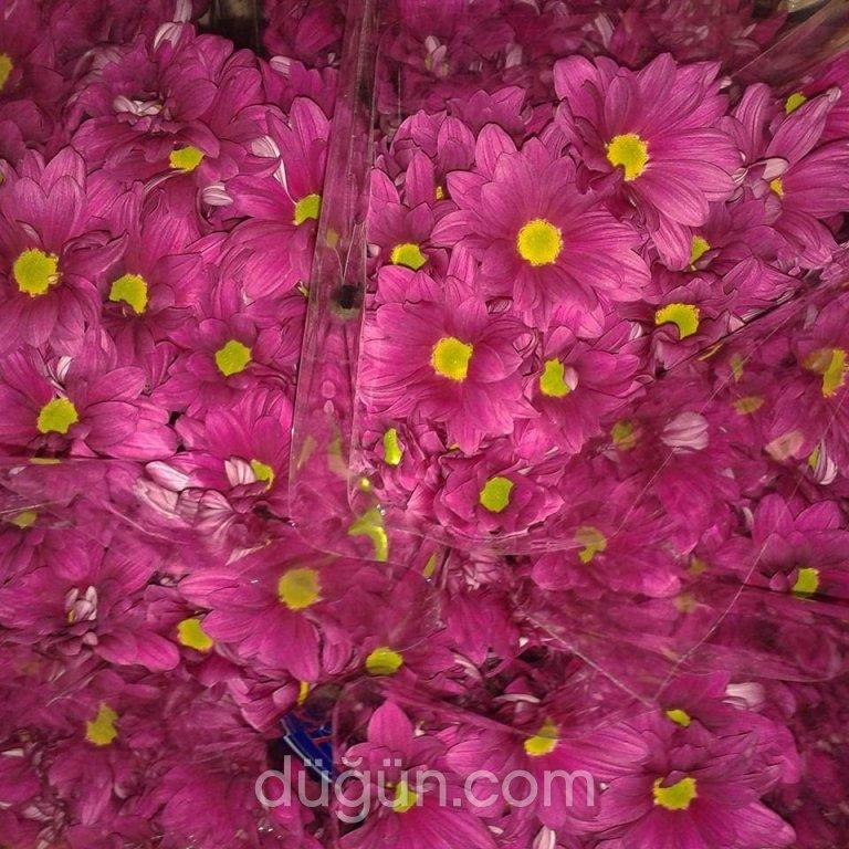 Arda Çiçekçilik
