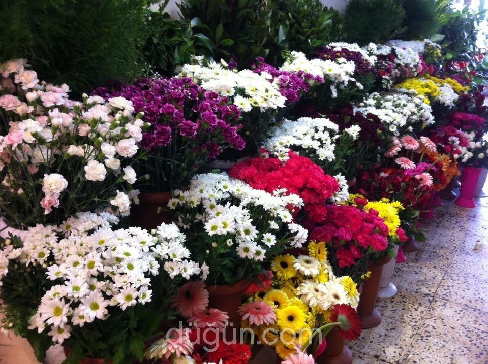 1 Demet Çiçek