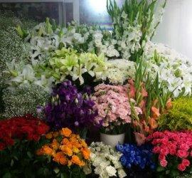 Salihli Buket Çiçekçilik