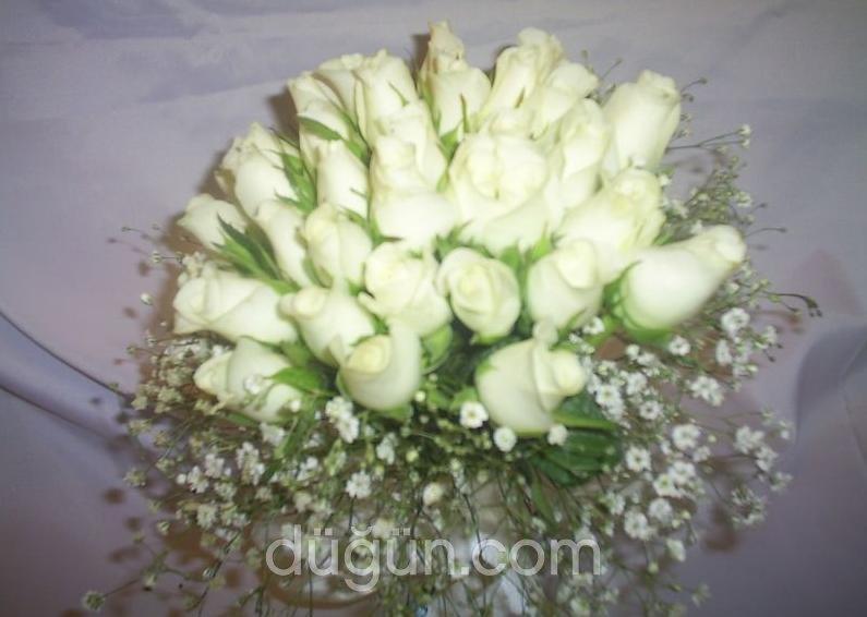 Ege Çiçekçilik