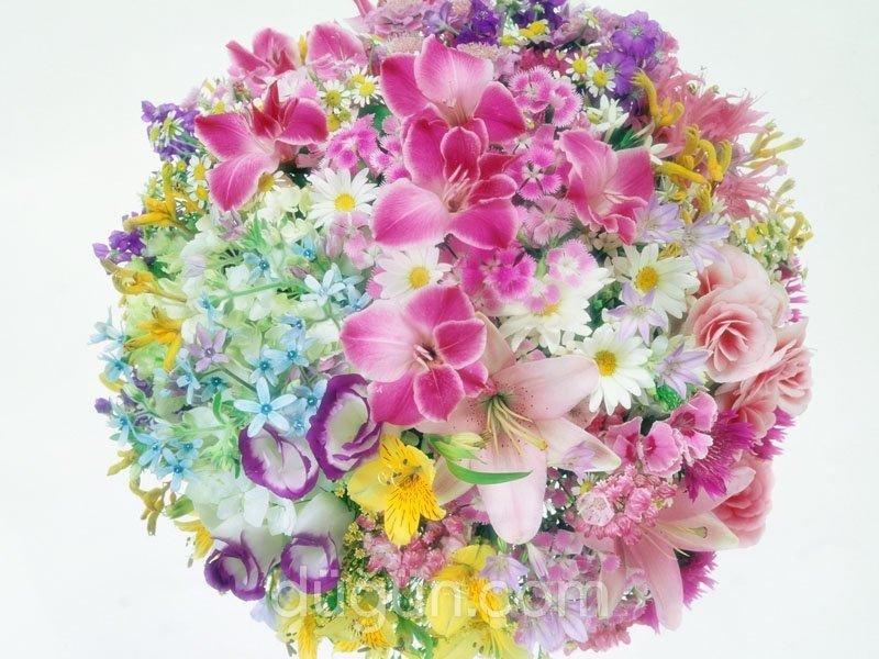 İnci Çiçek Evi