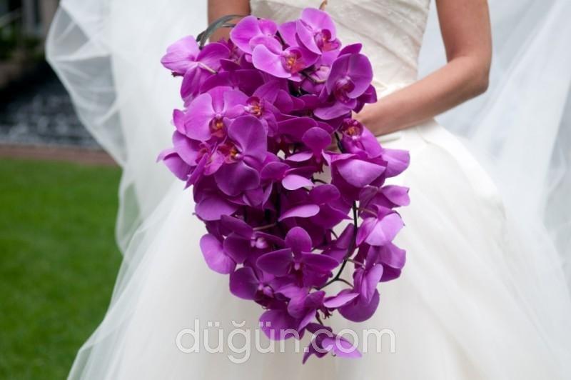 Antalya Çiçek