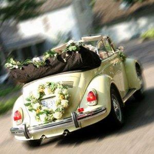 Vosvos Gelin Arabası Modelleri