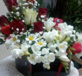 Filiz Çiçek Evi
