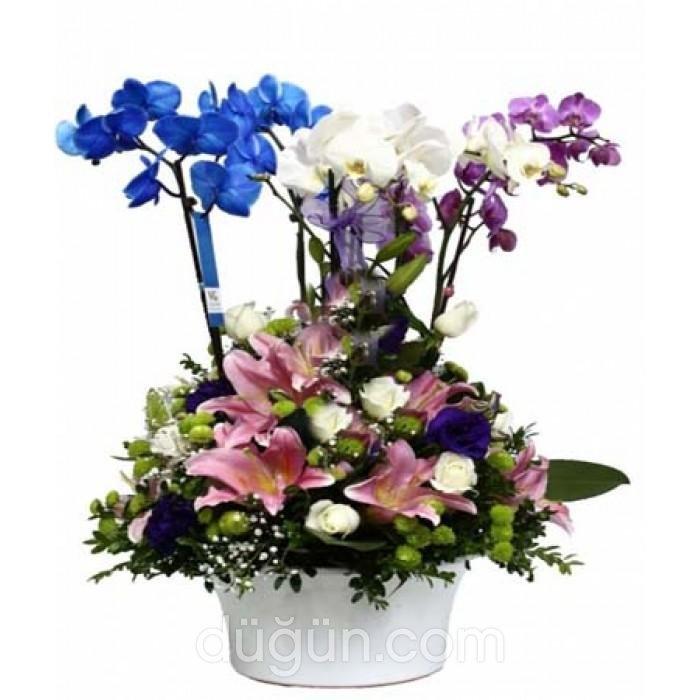 Tuana Çiçekçilik