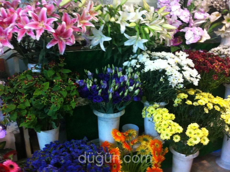 Firuze Çiçekçilik