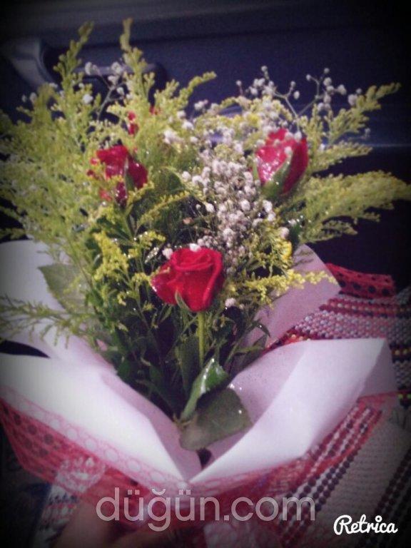 Noya Çiçekçilik