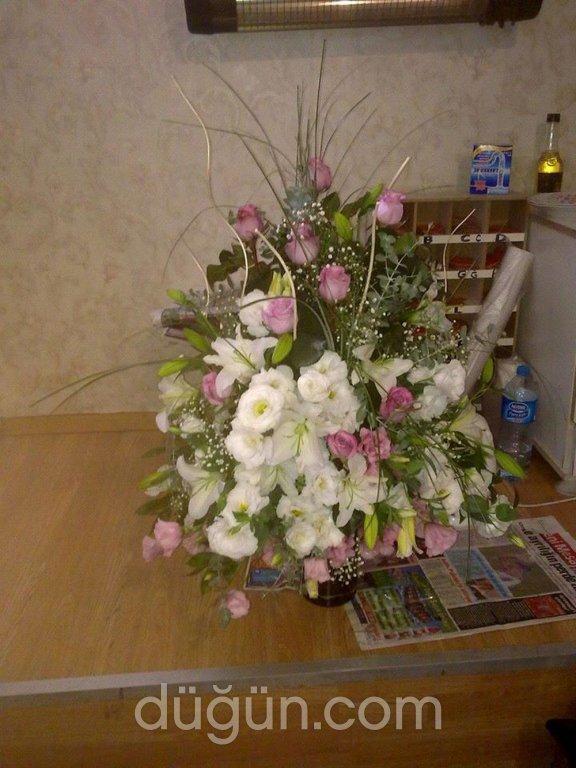 Orient Flora