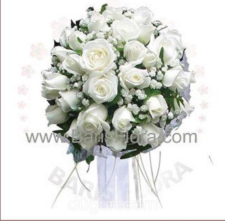 Barış Flora Uluslararası Çiçekçilik
