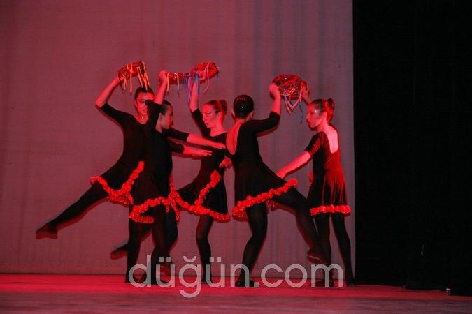 Kar Çiçeği Dans Okulu