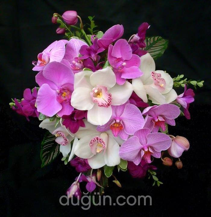 Sabuncakis Çiçekçilik