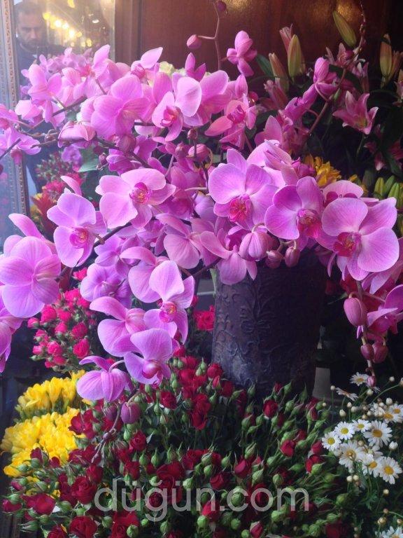 Şakayık Çiçek Evi