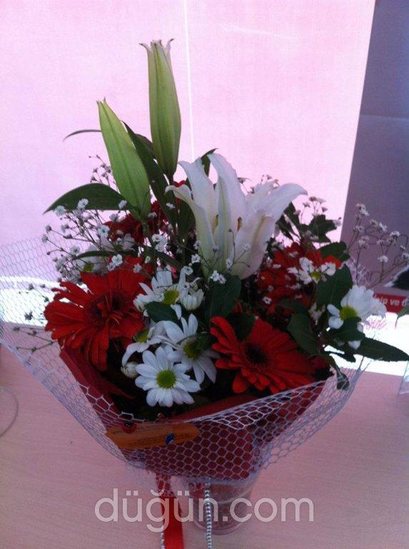 Sterliçya Çiçek