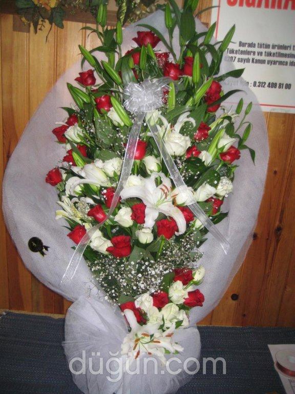 Orkide Çiçek Evi