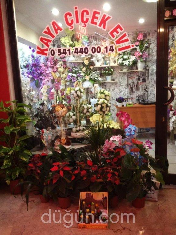 Kaya Çİçek Evi