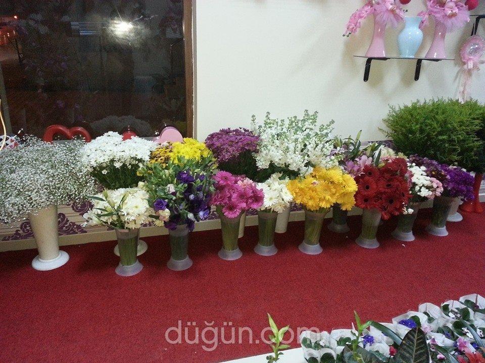 Frezya Çiçekçilik
