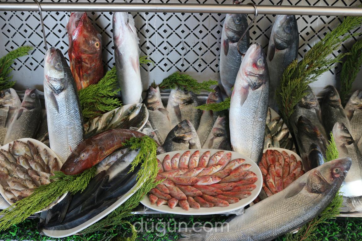 Tuzla Lagos Balık