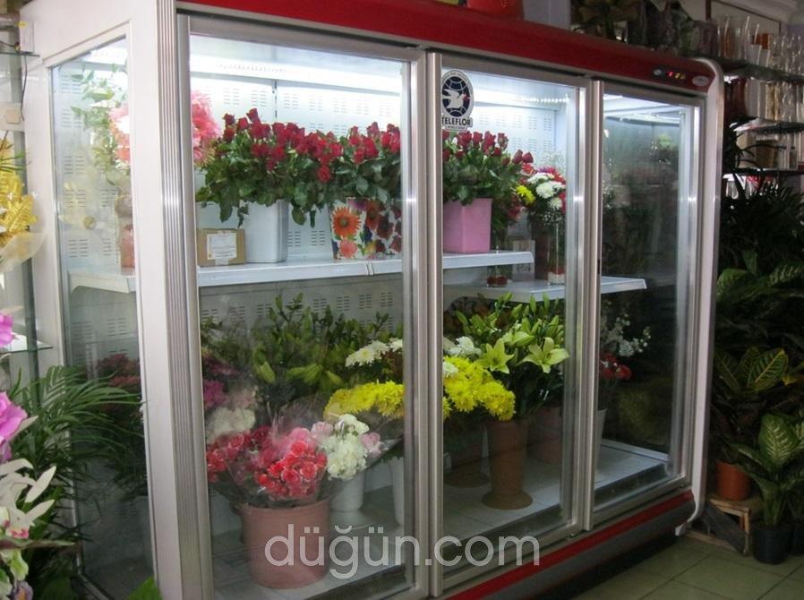 Kırmızıgül Çiçekçilik