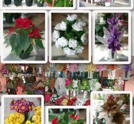 İnci Doğa Çiçekçilik