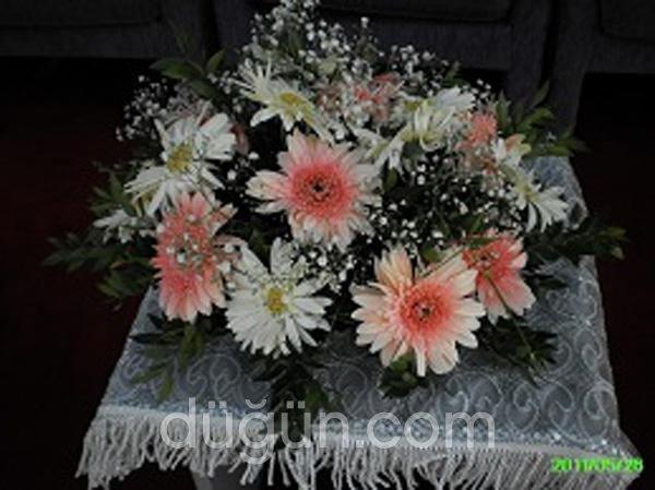 Lale Çiçekçilik UŞAK