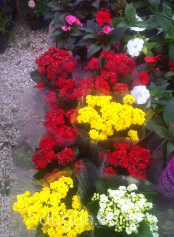 Hülya Çiçekçilik