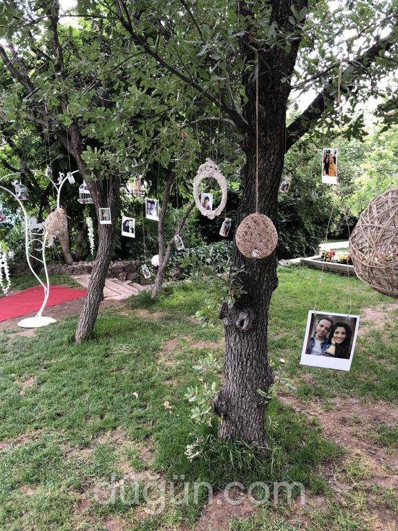 Erciyes Binicilik & Kır Bahçesi
