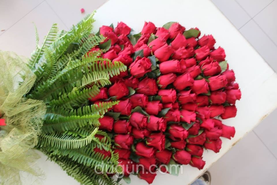 Anatolia Çiçek