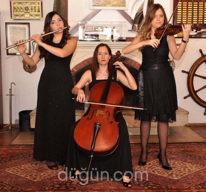 Orkestra Elit