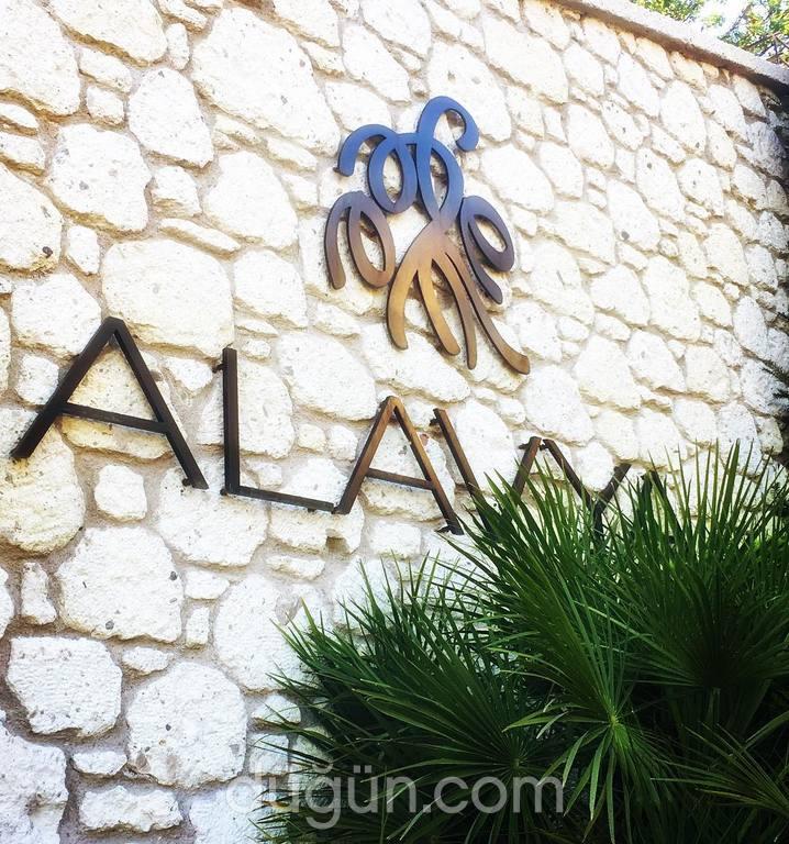 Alavya
