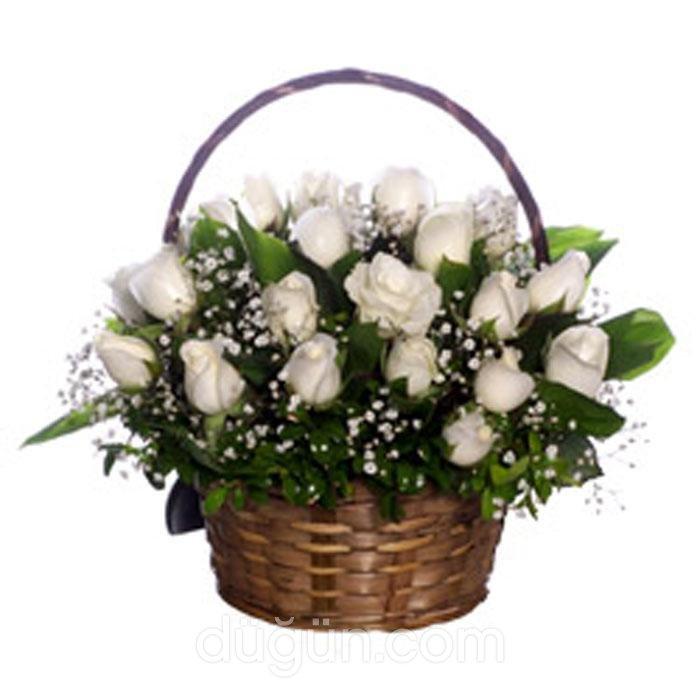 Tayga Çiçek