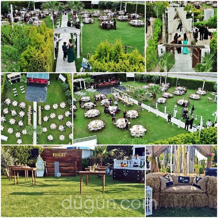 Violet Wedding & Events