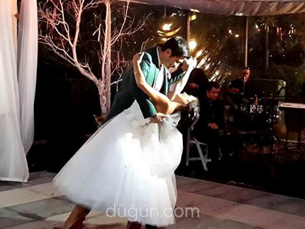 Happy Dans