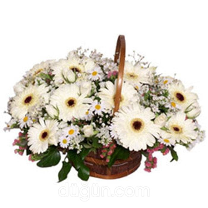 Ekin Çiçek