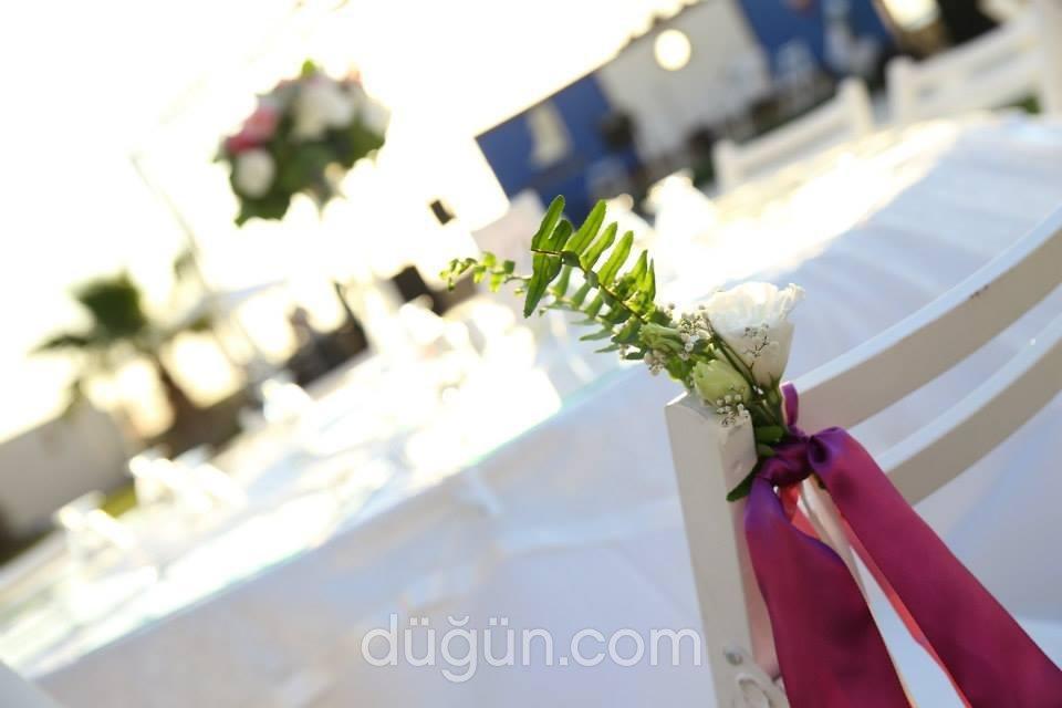 Umut Düğün Davet & Organizasyon
