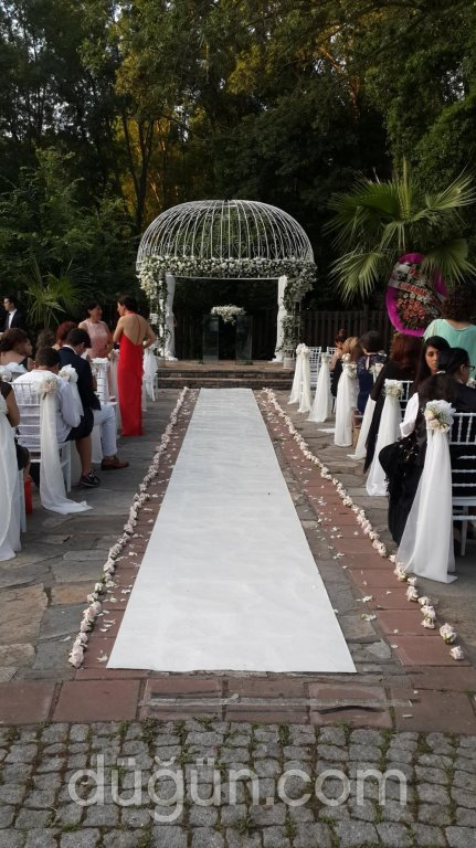 Wedding Ekinoks