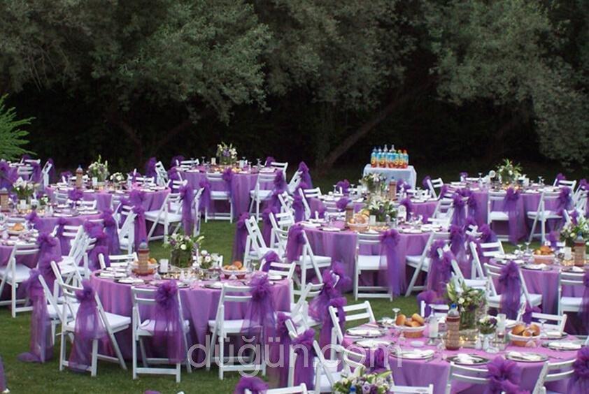 Gold Garden Pool & Wedding