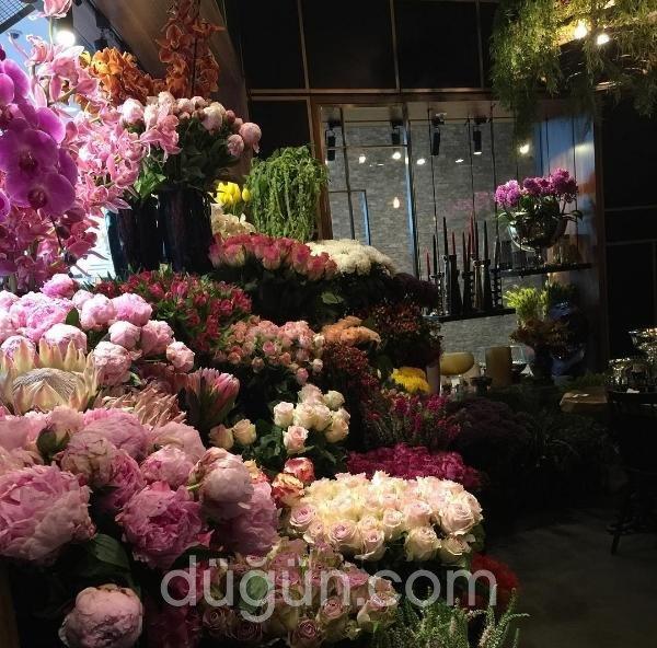 Inside Flowers