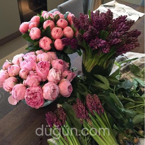 Inside Flowers 1
