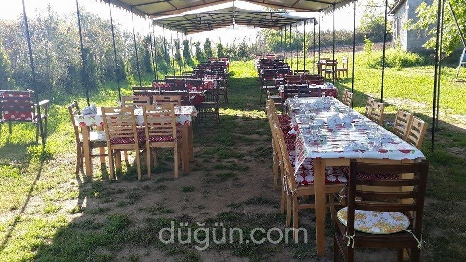 Organica Restaurant
