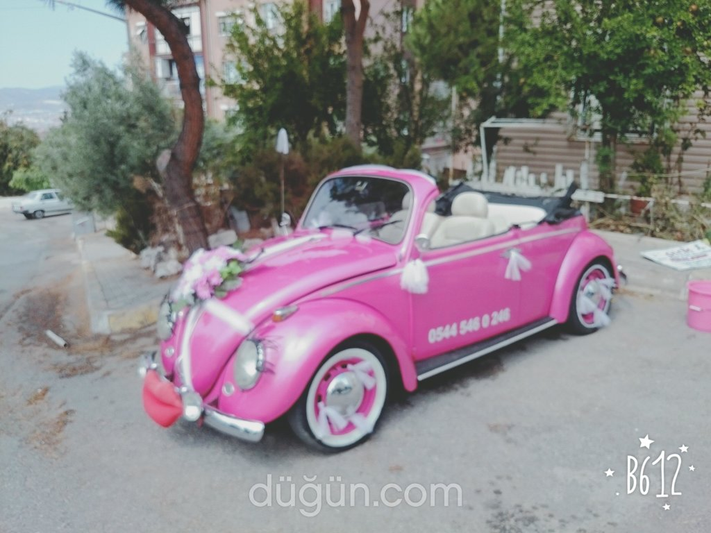 Pink Kiralama