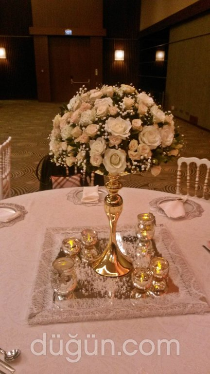 Daisy Flowers & Events