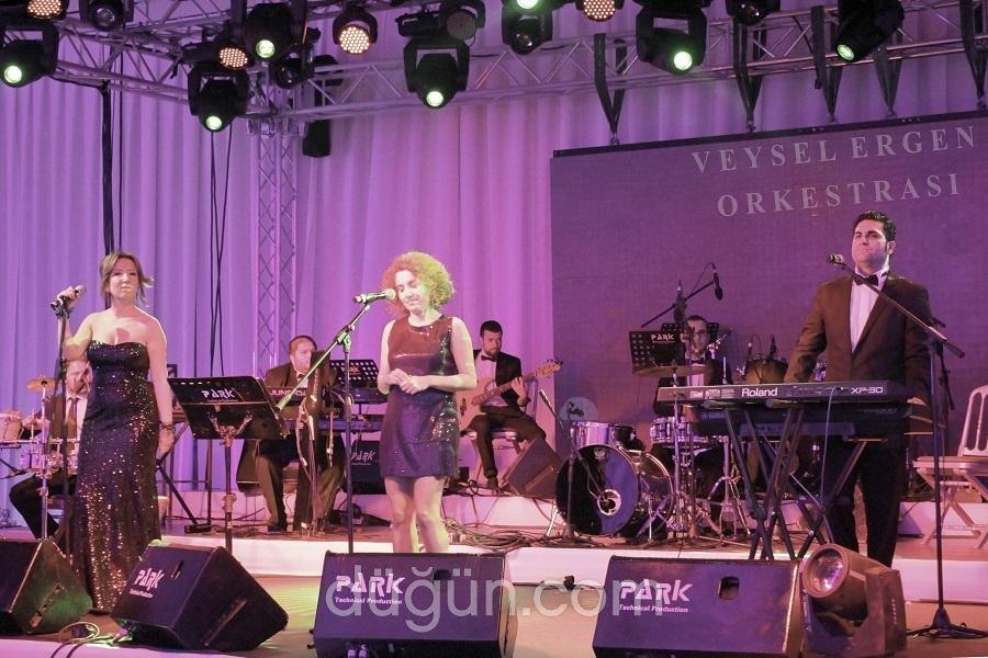 Veysel Ergen Orkestrası